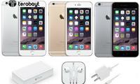 Terabayt-эксклюзив: қулай нархларда iPhone!