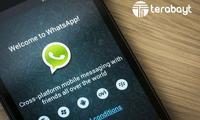 WhatsApp айрим мамлакатларда асосий янгиликлар сервисига айланди
