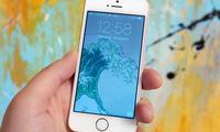 Apple iPhone SE'ни қаерда йиғиш бўйича бир тўхтамга келди