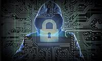 Энг оммалашган 3 турдаги кибер жиноят маълум бўлди