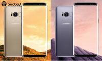 Россияда Samsung Galaxy S8 ва S8+ ўртача 15% га арзонлашди