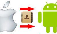 iOS'даги контактларни Androidга қандай ўтказамиз?