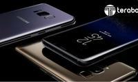 «Малика» савдо марказида Samsung смартфонлари нархлари (2017 йил 5 июнь)