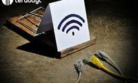 Бепул Wi-Fi нимаси билан хавфли?