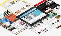 Веб сайтлар қандай турларга бўлинади?
