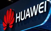 Huawei Ўзбекистонни рақамлаштириш ва маълумотлар марказларини яратиш ғоясини илгари сурди