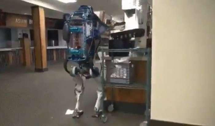 Twitter'ни «портлатган» видео: «Энг одамсимон» роботни сиз ҳам кўринг!