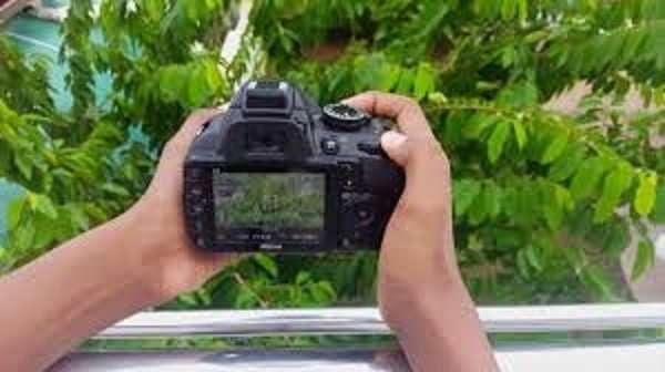 Микрофотография конкурси: ғолиблар аниқланди