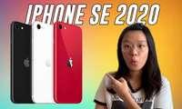 iPhone SE 2020 сотувга чиқибоқ AnTuTu'да ҳафсалани пир қилди: Apple'нинг эски касали қўзидими!?