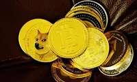 Ilon Mask eng kuchli kriptovalyutani e'lon qildi: bu bitkoin emas!